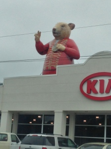 Our local Kia dealership has a HUGE rodent problem!