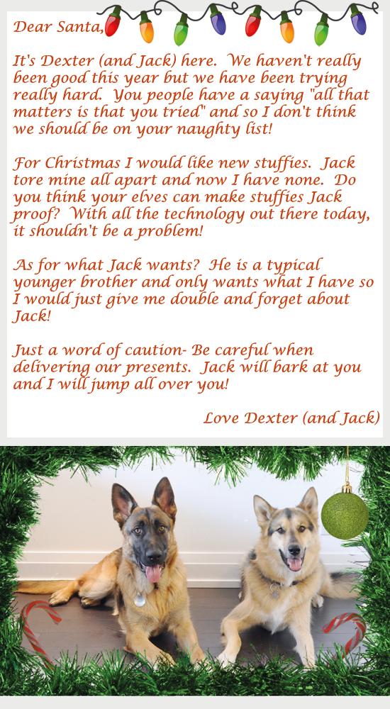 Dexter-and-Jack-Santa-lette