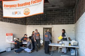 An emergency boarding facility set up to provide temporary housing.