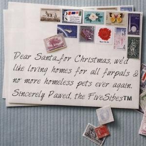 FiveSibes Santa letter