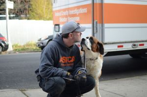 Do you know how much effort goes into helping animalsafter disaster strikes??
