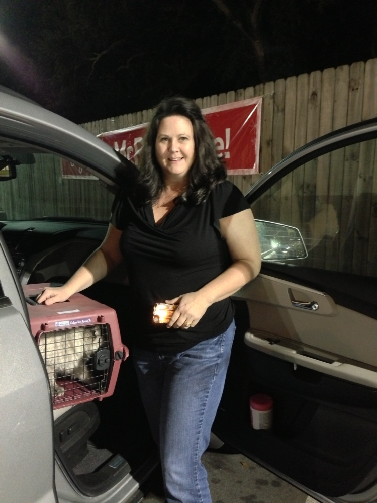 Jen handed off to Jan. The kitties spent the night with her then she transported to New Orleans.