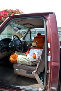 Mr. Bear!