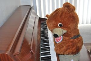 Mr Bear is a piano virtuoso!