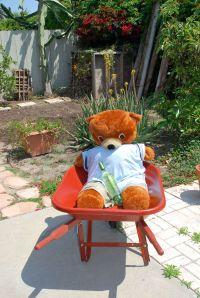 Indulging in a spot of yard work