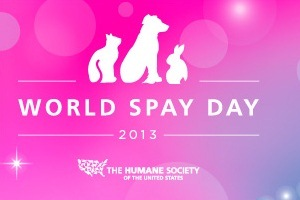 World Spay Day Pet Pagent