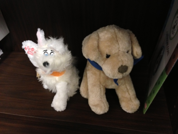 These guys are in our friend's office to comfort children who visit