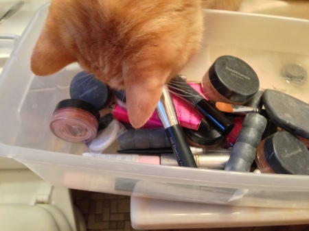Bubba kept trying to steal Jen's makeup brushes!