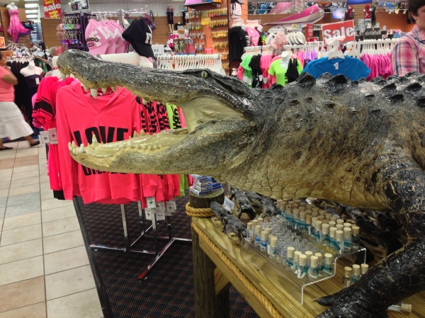 This alligator was surrounded by animal objects for sale as souvenirs.