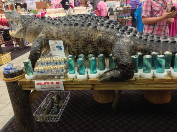 Gator heads, shark teeth, and baby sharks in a jar were among the items for sale.