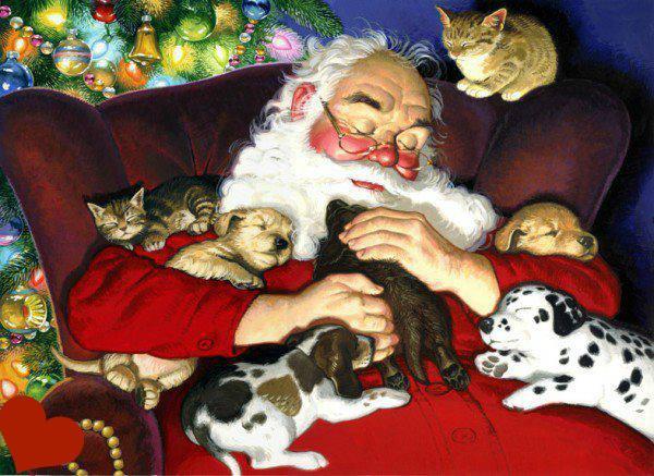 Santa with pups and kits