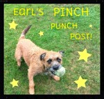 BADGE- Earl's Pinch Punch Post!