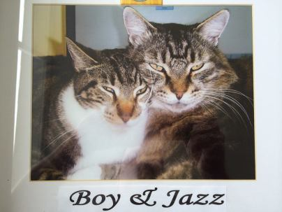 boy and jazz
