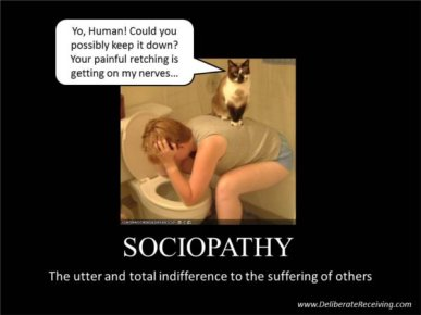 sociopathy cat