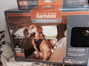 Kurgo's Tru-Fit Smart Harness comes with a seat belt tether to secure your dog in the back seat.