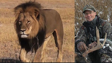 Cecil the beloved lion of Hwange National Park in Zimbabwe was brutally murdered by Minnesota dentist Walter Palmer.