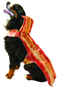You can get this costume at dogvills.com.